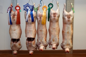 Carcase Top 5 Line Up
